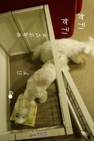 10_6_8165.jpg
