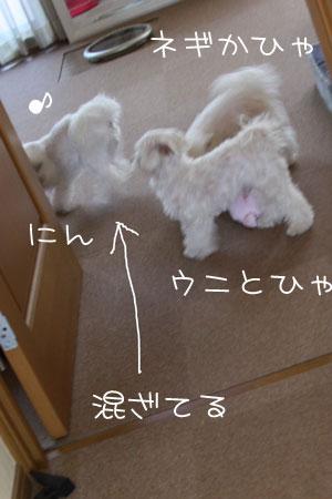 10_8_5208.jpg