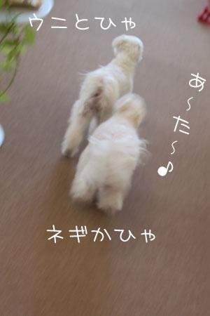 10_8_5222.jpg