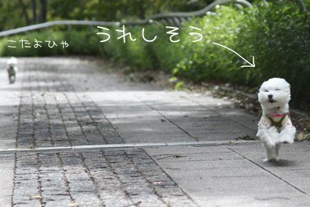 10_9_5267.jpg