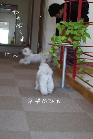 11_10_0832.jpg