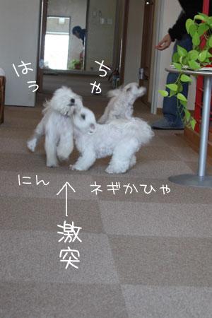 11_10_0833.jpg