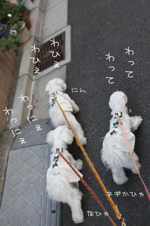 11_10_3817.jpg