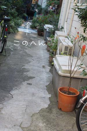 11_10_3824.jpg