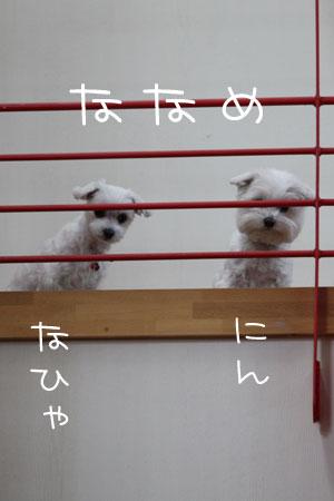 11_12_1008.jpg