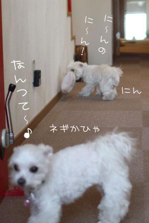 11_12_4158.jpg