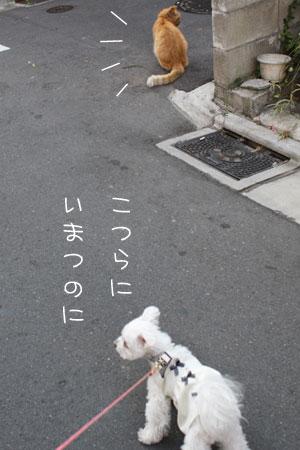 11_12_4234.jpg