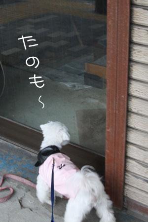 11_13_1096.jpg
