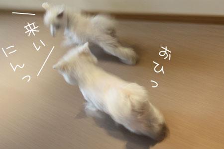 11_13_1129.jpg