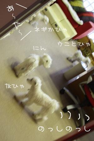 11_13_1138.jpg