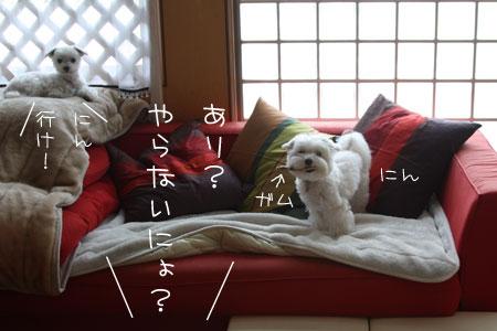 11_14_1163.jpg