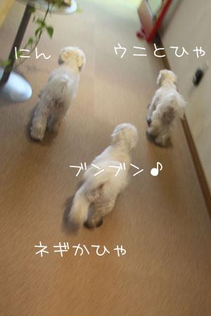 11_14_1271.jpg