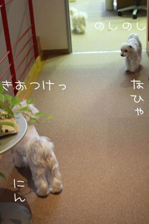 11_14_1276.jpg