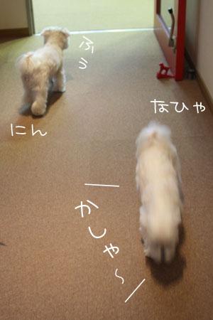 11_14_1279.jpg