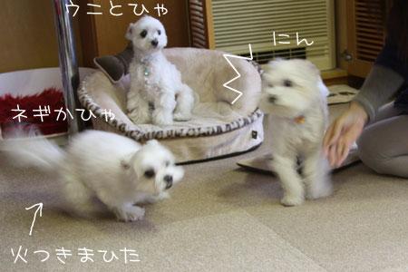 11_16_1636.jpg