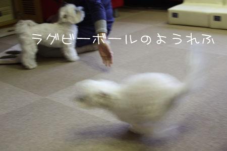 11_16_1638.jpg