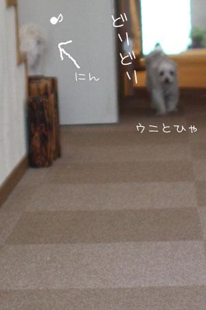 11_18_4650.jpg
