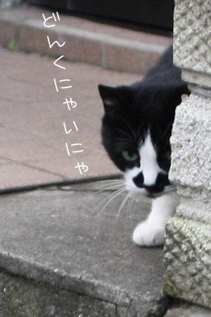 11_18_4742a.jpg