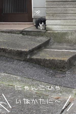 11_18_4748.jpg