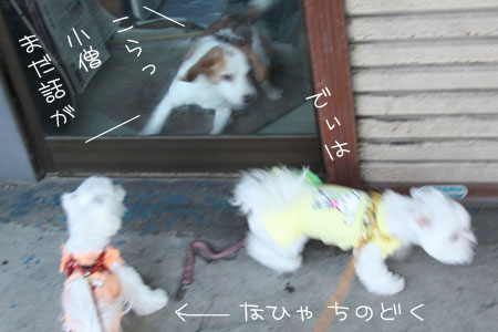 11_1_2404.jpg