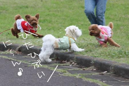 11_20_2311.jpg