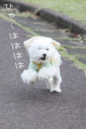 11_20_2331.jpg