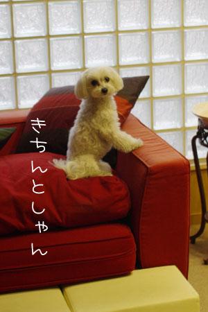 11_21_4980.jpg