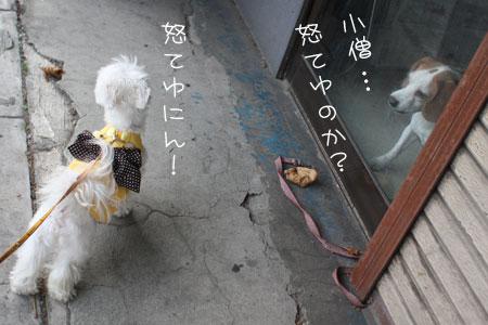 11_23_5063.jpg