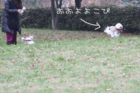 11_24_3504.jpg