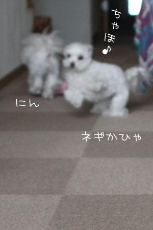 11_24_5143.jpg