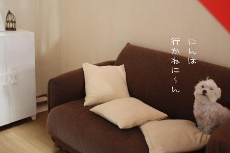 11_24_5250.jpg