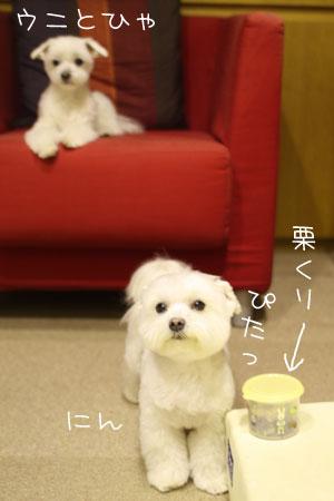 11_24_5360.jpg