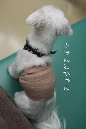 11_26_5450.jpg