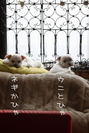 11_27_3899.jpg