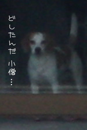 11_27_5489a.jpg