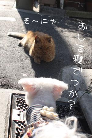 11_28_5641.jpg