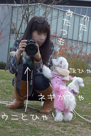 11_29_2.jpg