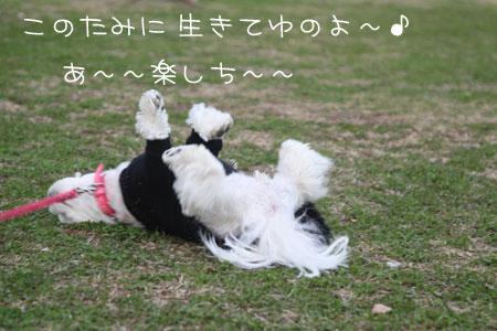 11_29_4088.jpg