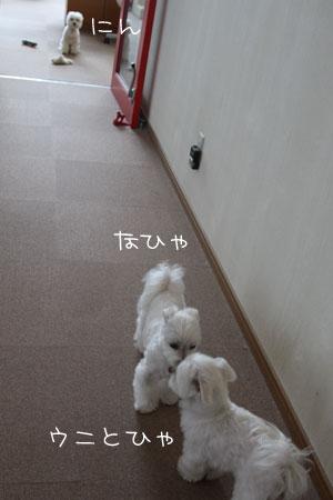 11_30_4359.jpg