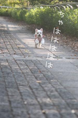 11_30_9200.jpg