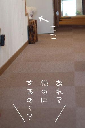 11_3_2597.jpg