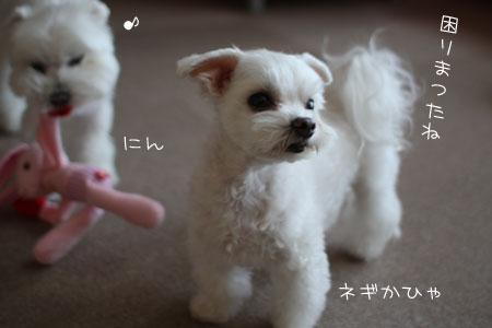 11_3_2659.jpg