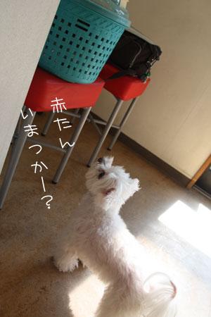 11_3_8030.jpg