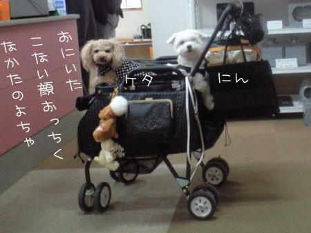 11_4_19_0169.jpg