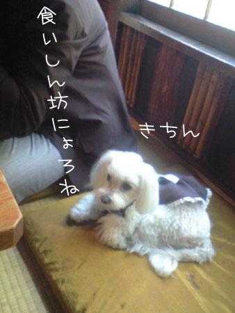 11_4_19_0173.jpg