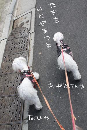 11_7_3300.jpg