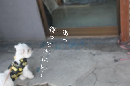 11_7_3383.jpg