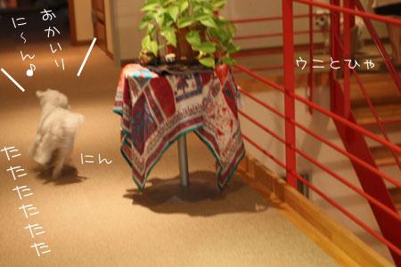 11_8_3620.jpg