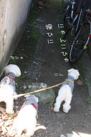 12_10_6578.jpg