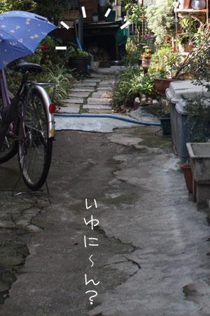12_15_6787.jpg